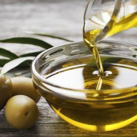 Olajok, olivabogyók